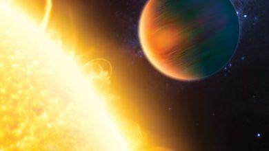 صورة سؤال وجواب مع عالمة بالكواكب النجمية