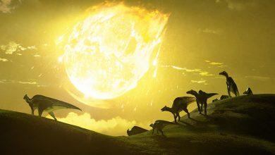 صورة الديناصورات انقرضت بفعل ضربة مائلة لكويكب