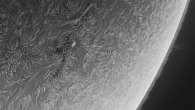 صورة بقعة شمسية